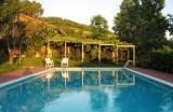 The-pool-720x470